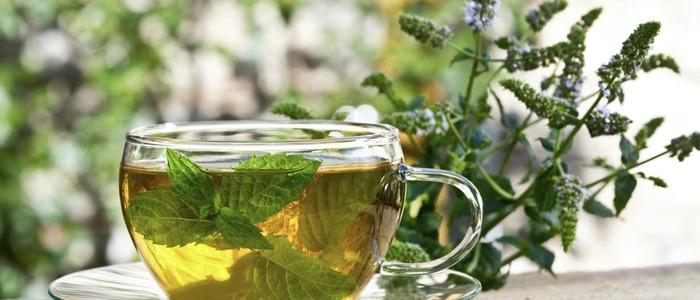 пить чай с мятой