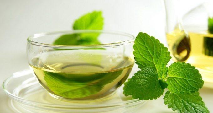 Чай с мятой – полезные свойства и правила заготовки