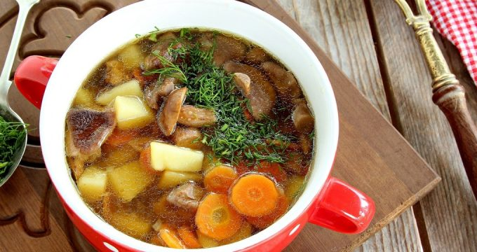 Суп из белых грибов – 5 рецептов
