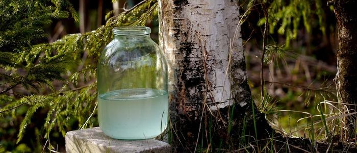 берёзовый сок с лимонной кислотой